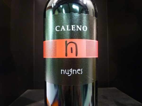 Nugnes Caleno Falerno Riserva 2013