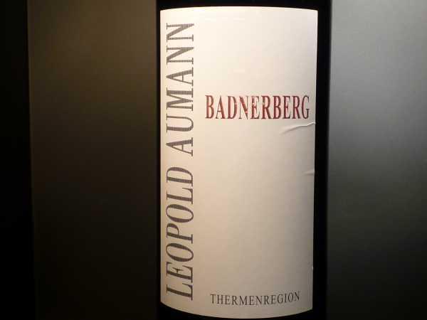 Aumann Badnerberg 2011