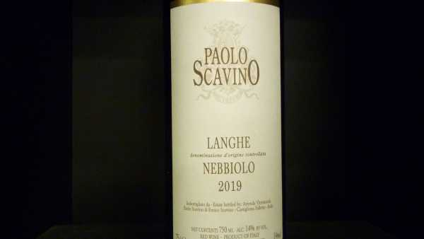 Paolo Scavino Nebbiolo Langhe DOC 2019