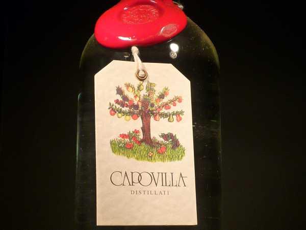Capovilla Merlot